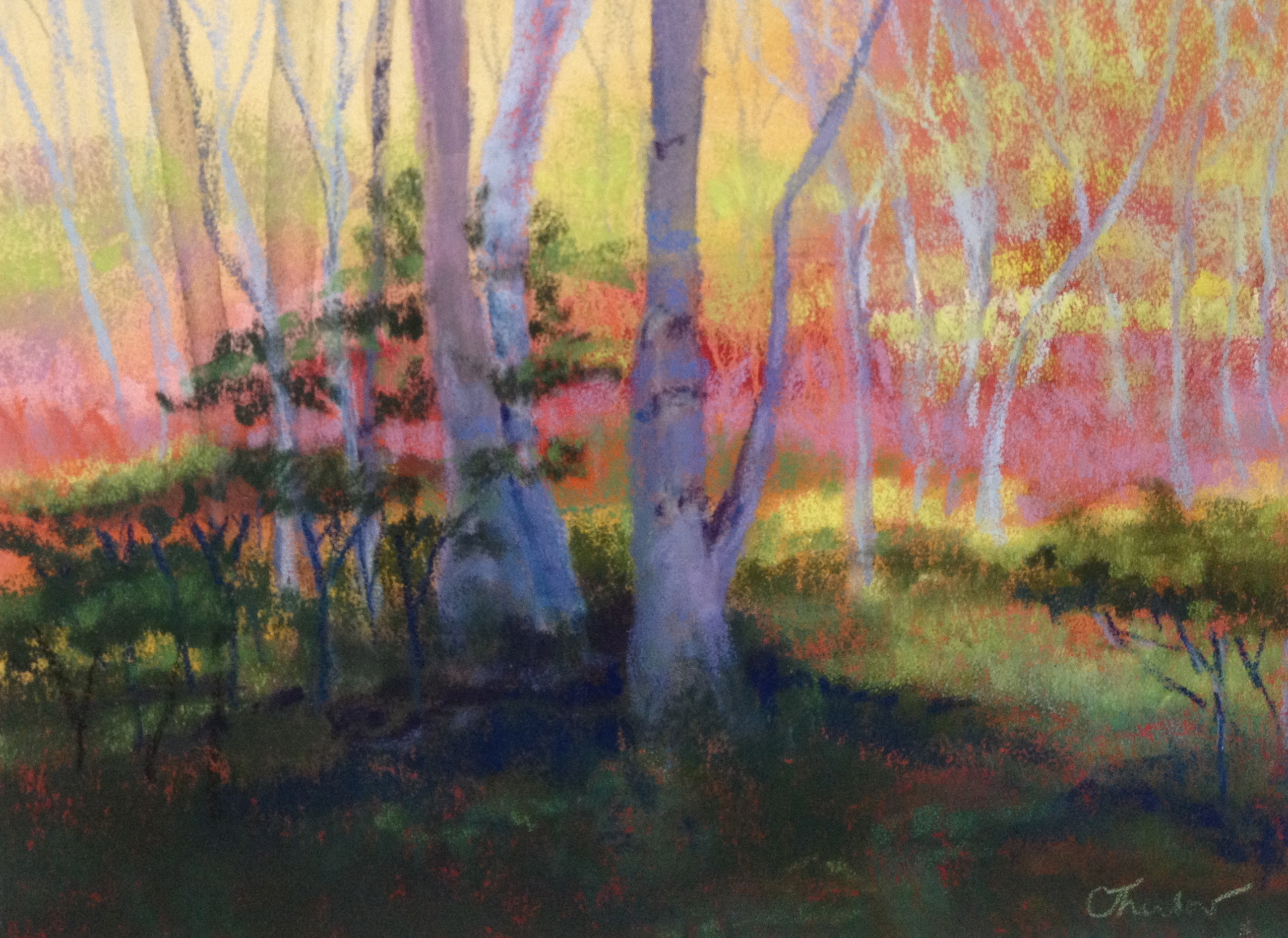 "Honorable Mention: ""Birch Oasis"" by Carol Thurlow"